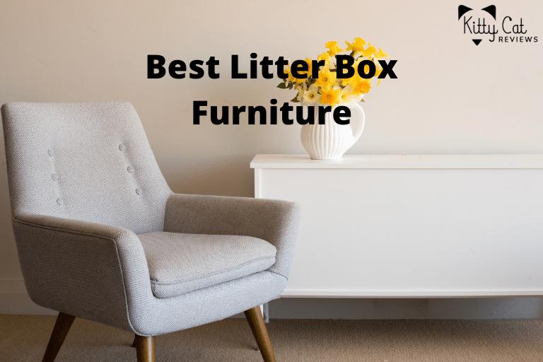 Best Litter Box Furniture