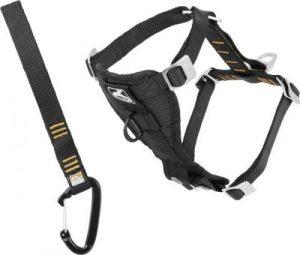 Harness for Savannah Cat