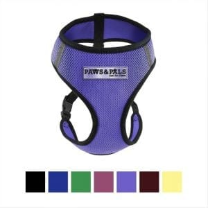 Paws and Pals cat harness