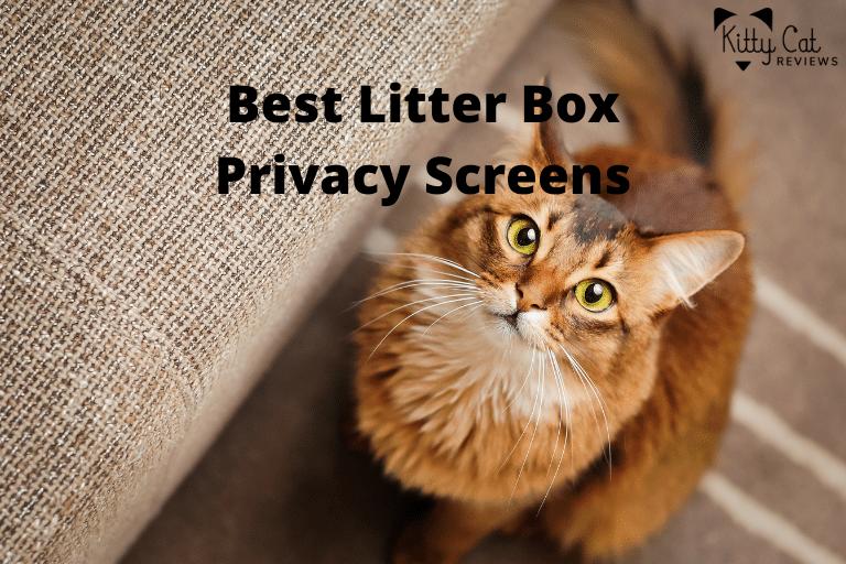 Best Litter Box Privacy Screens