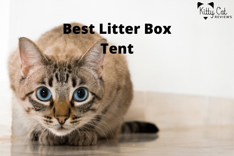 Best Litter Box Tent