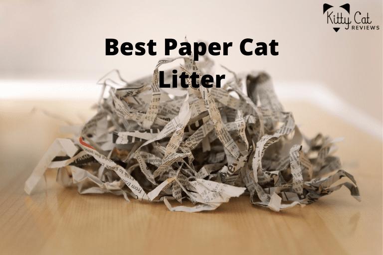 Best Paper Cat Litter