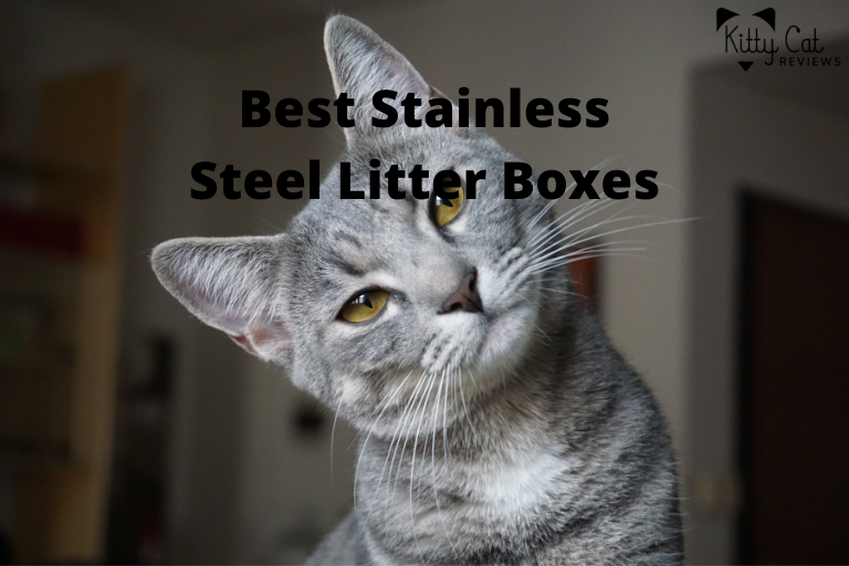 Best Stainless Steel Litter Boxes